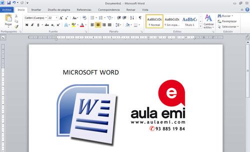 CURS WORD informàtica